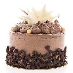 Chocolate cakes isolated on white background